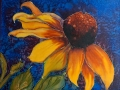 Sunflower_Series_medium-s